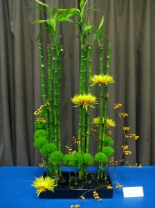 Ikebana using chrysanthemums (4)